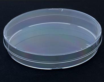 Boîte de Petri en plastique